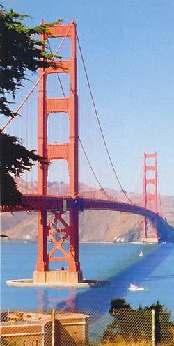 Фото №4 - В галантном, уверенном Сан-Франциско