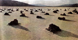 Фото №2 - По дорогам Америки: пустыня