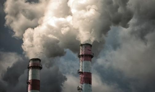 Фото №1 - Депутат Закса: Завод по переработке медотходов нельзя строить в Красном Бору