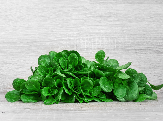 Фото №4 - 10 видов зеленого салата и 6 потрясающе простых рецептов с ним