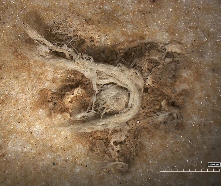 Фото №1 - Найдена старейшая в мире нить