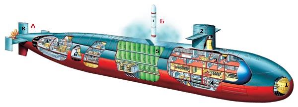 Фото №5 - Подводный меч