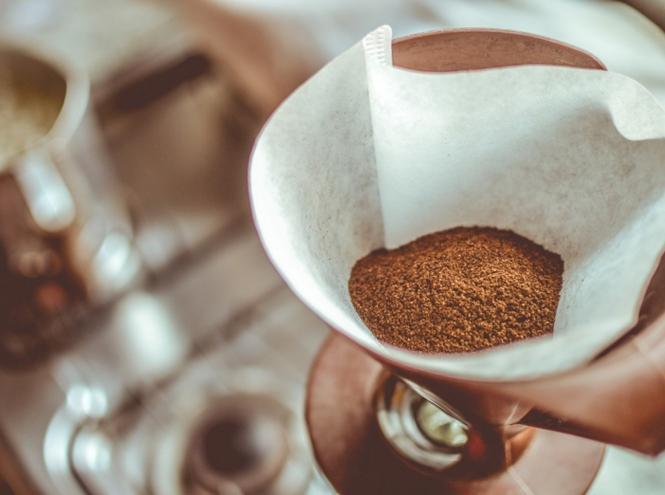 Фото №6 - Обжарка, помол, хранение: тайные знания о кофе, которые сделают вас профессионалом