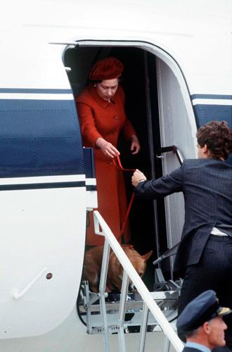 Фото №22 - Елизавета II и ее корги: история главной королевской страсти