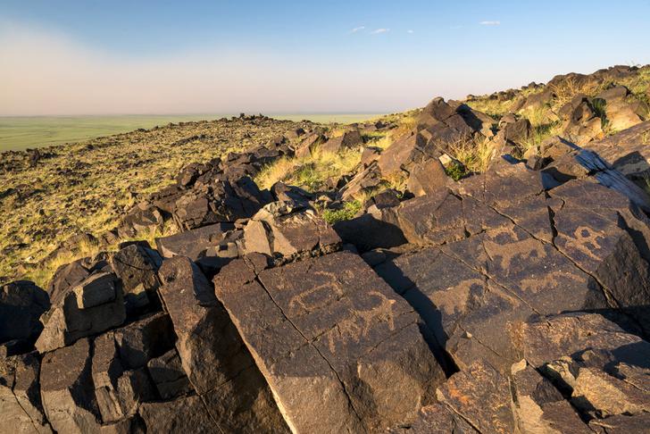 Фото №5 - Автопробег: открытый простор пустыни Гоби