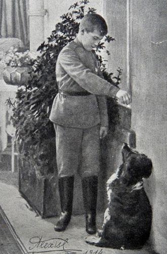Фото №3 - Что случилось с домашними животными Романовых после трагедии 1918 года
