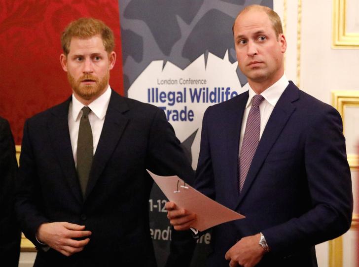 Фото №1 - Последний рубеж: как Гарри и Уильям делят наследие принцессы Дианы