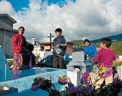 Фото №6 - Несгинувшие майя