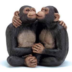 Фото №1 - Приматы способны на сочувствие