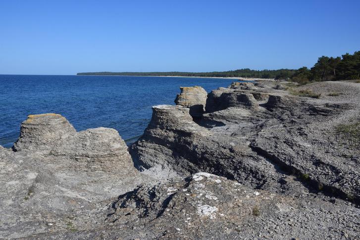Фото №1 - В Швеции обнаружили руины замка, который считали легендой