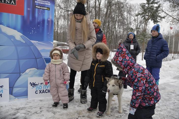 Фото №1 - В парке «Сокольники» прошла ежегодная программа «По пути с хаски»
