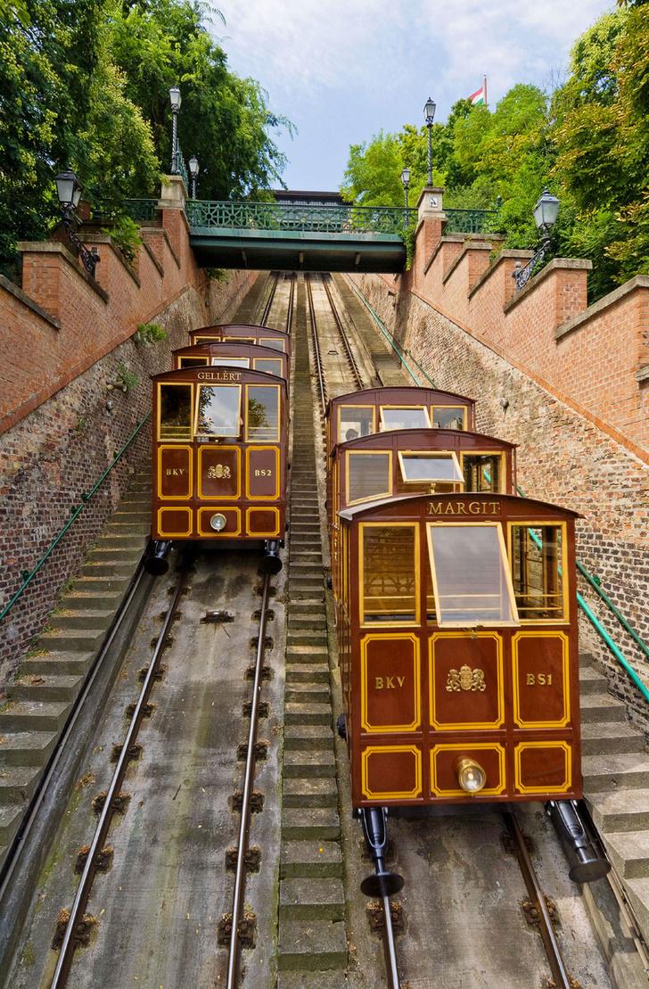 Фото №5 - На подъеме: 9 вагонов счастья