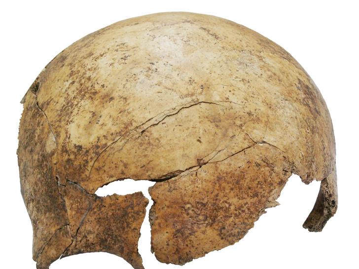 Фото №2 - В Германии обнаружено захоронение замученных пытками людей эпохи неолита