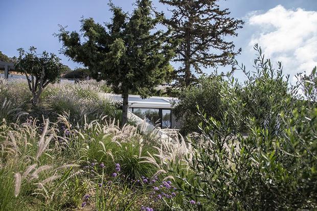 Фото №7 - «Секретный дом» на греческом острове Парос