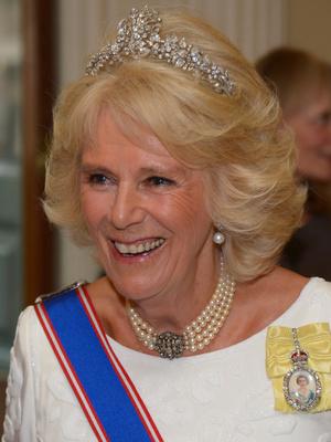 Фото №2 - Шкатулка будущей королевы: любимые украшения герцогини Камиллы