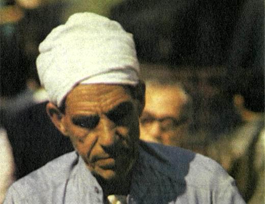 Фото №1 - Крестьяне и бедуины