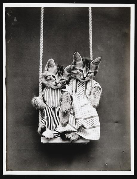 Фото №10 - Живые куклы