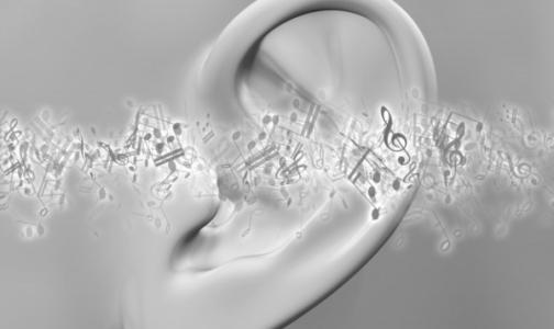 Фото №1 - В Петербурге детям c «искусственным слухом» бесплатно заменят речевые процессоры
