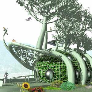 Фото №1 - Дом вырастят из корней