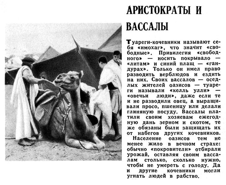 Фото №7 - Марокко сто лет назад: Всадник на троне