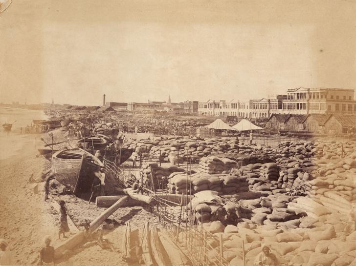 Фото №4 - Мадрасский мор: история Великого голода в Индии 1876–1878 годов в фотографиях