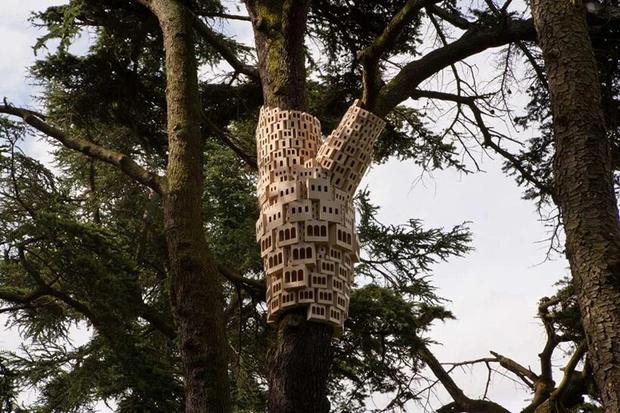Фото №5 - Дома для птиц в Великобритании