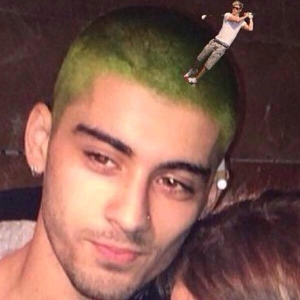 Фото №5 - Лучшие МЕМЫ на тему зеленых волос Зейна Малика