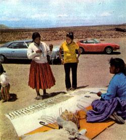 Фото №4 - По дорогам Америки: пустыня