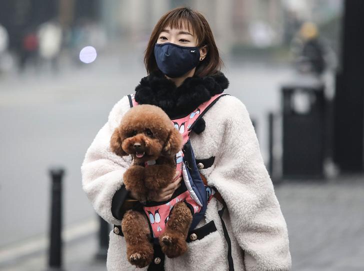 Фото №1 - Эпидемия паники: как перестать бояться заболеть коронавирусом