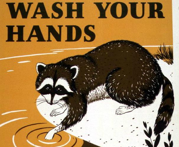 Фото №1 - Агитационные плакаты про мытье рук 1920-1940-х годов