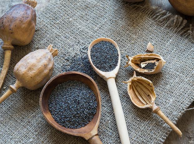 Фото №3 - Травы маслом не испортишь: готовим оригинальные заправки для салатов