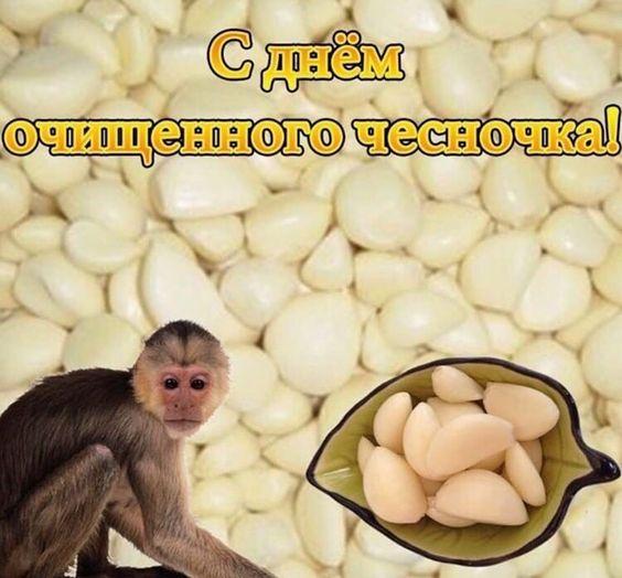 Фото №11 - 10 интернет-мемов, которые популярны только в России