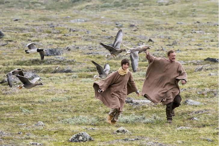 Фото №5 - Актуальная история путешествия современного Нильса с дикими гусями