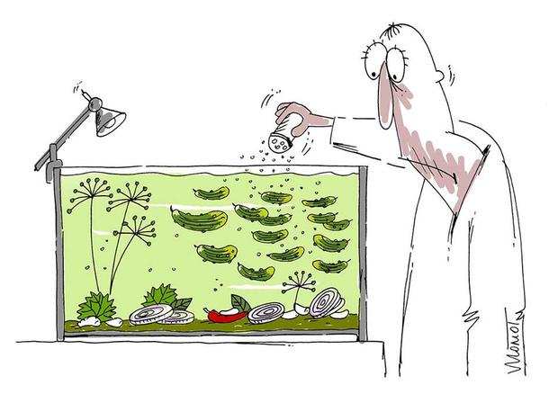 Фото №1 - 29 душевных карикатур художника Валерия Момота