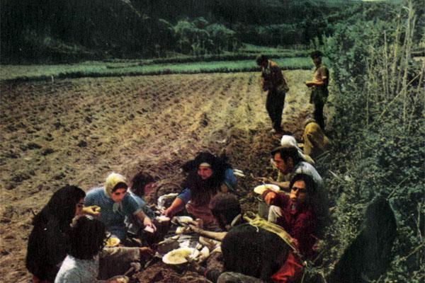 Фото №1 - Неспокойные Азоры