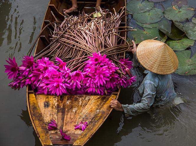 Фото №4 - Неизвестный Вьетнам: тайный рай, ставший доступным всем