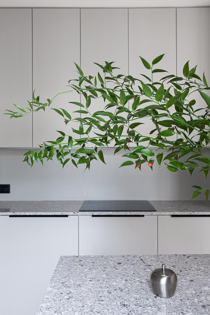 Кухня визуально сливается со стеной.