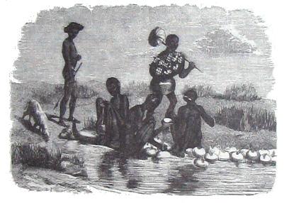 Фото №4 - Давид Ливингстон и его открытия в Южной Африке