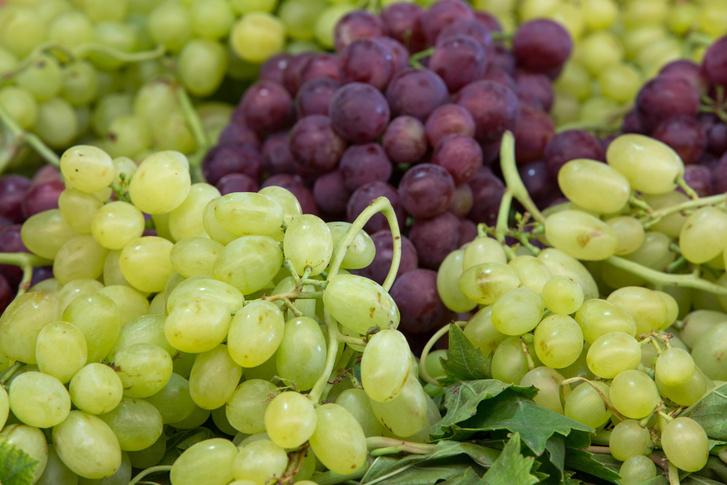 Фото №1 - Как размножается виноград без косточек?