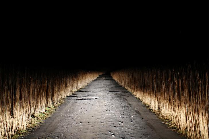 Фото №9 - Местные жители: призраки замка Нейдпат