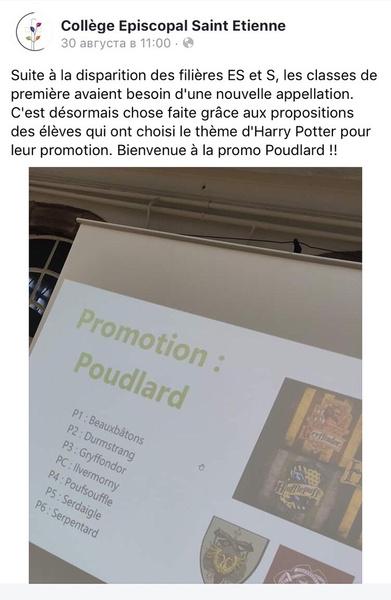 Фото №1 - Французский колледж назвал свои классы в честь факультетов Хогвартса