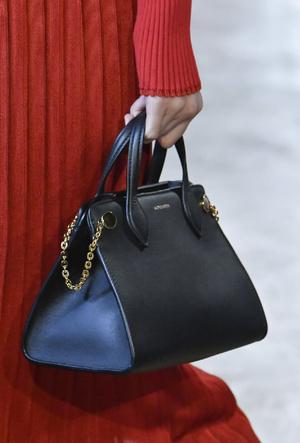 Фото №5 - Самые модные сумки осени и зимы 2020/21