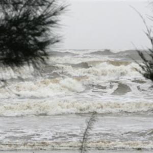 Фото №1 - Тайфун ударил по Вьетнаму