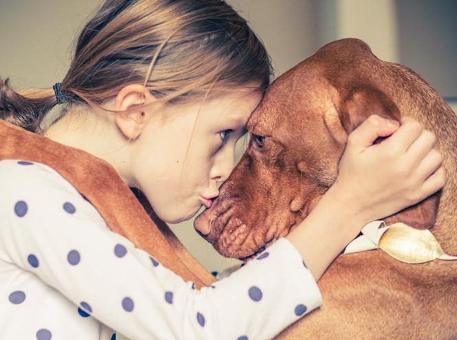 Фото №2 - Дети и домашние животные: чем опасна их дружба?