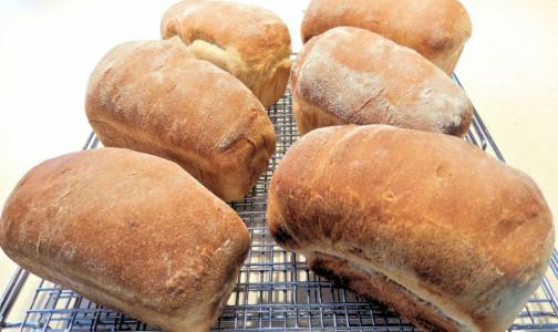 Фото №1 - «Общественный контроль» выяснил, в каком хлебе слишком много сахара