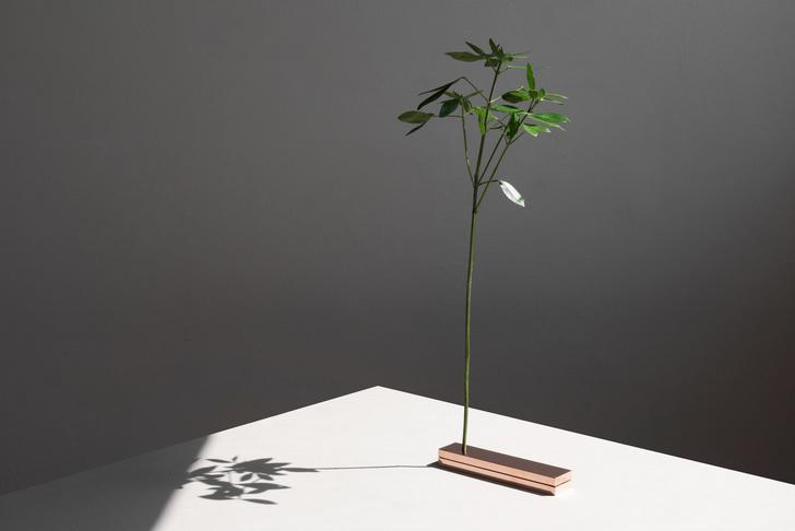 Фото №8 - No Vases: вазы без ваз