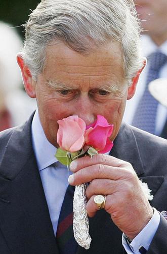 Фото №3 - Будет ли принц Гарри носить обручальное кольцо?