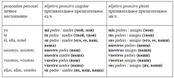 Фото №1 - Зажигательный испанский: урок 15— изучаем притяжательные местоимения