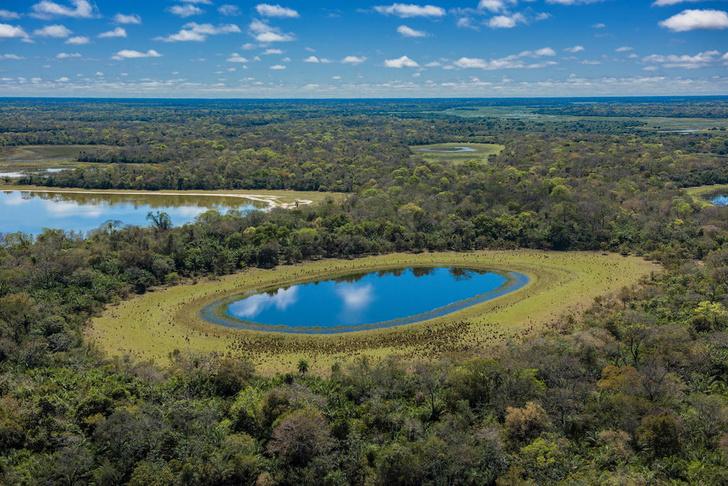 Фото №9 - Притягательная трясина: 12 самых живописных болот мира