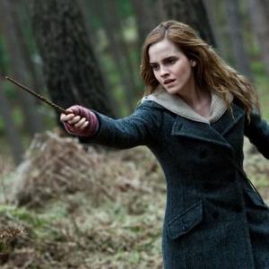 Фото №2 - Топ-10 самых могущественных палочек из вселенной «Гарри Поттера»